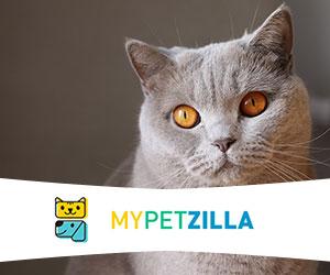Mypetzilla
