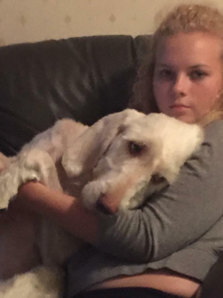 Royston Dog Rescue