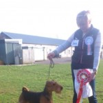 Quality Airedale Terriers Show Champion Sired