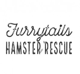 Foster Carer Wanted For Expanding Hamster Rescue