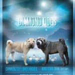Shar Pei pups due from KC Assured Breeder
