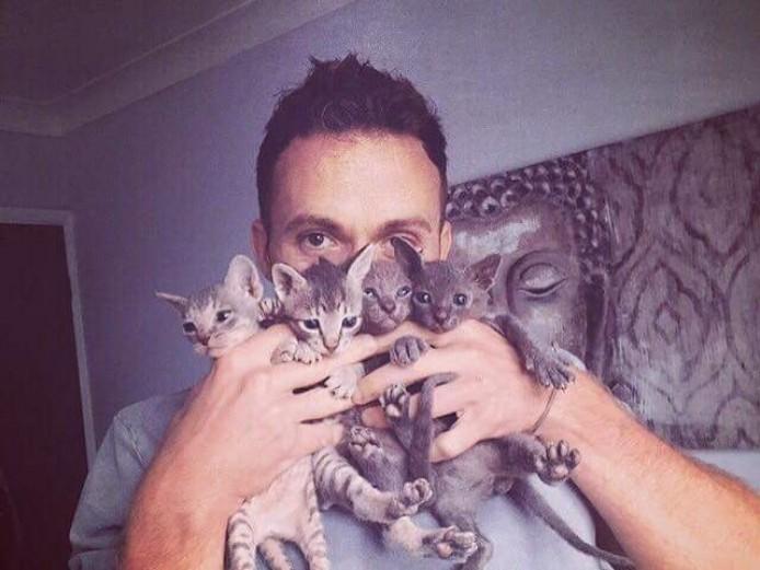 Donskoy Sphynx kittens