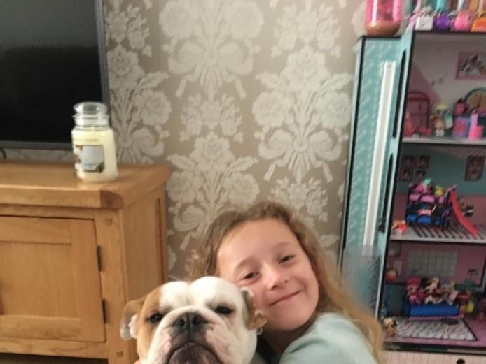 Superbly Bred Gorgeous Kc Reg British Bulldog Pups Born 05/05/2019